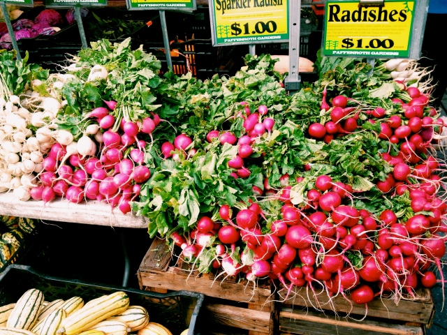 red radishes 2