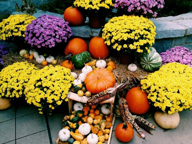 Atlanta Botanical Gardens - Entrance