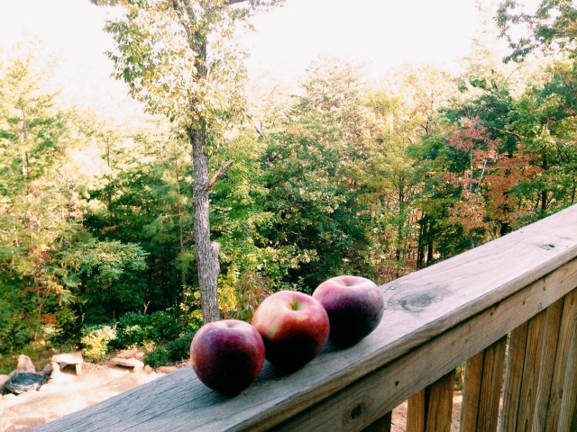 apples in ellijay