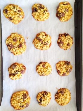 Chocolate Orange Lace Cookies