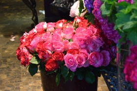 Pretty Flowers in Paris ~ Georgia Peach on My Mind